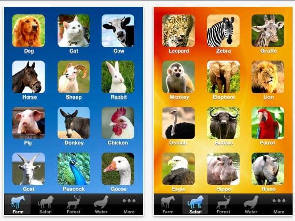 Zoola sau cum vizităm Zoo prin iPhone