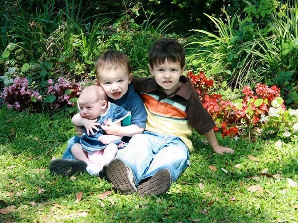 Se caută voluntari pentru amenajarea Grădinii Copiilor la Grădina Botanică