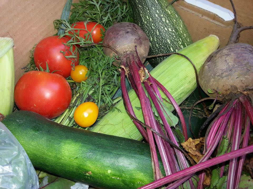 Coșul de legume sau cum îți poți comanda online legume sănătoase și gustoase