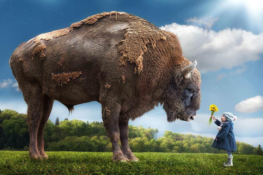 Un tătic creativ face fotografii incredibile copiilor