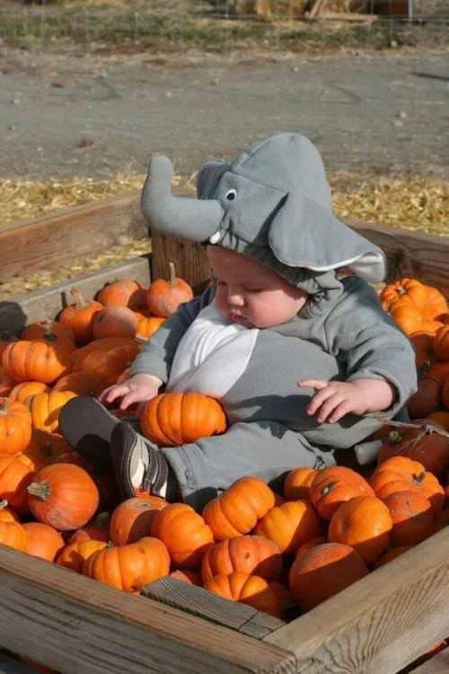 Recomandările de joi: activități pentru copii și părinți (31 octombrie – 1 noiembrie)