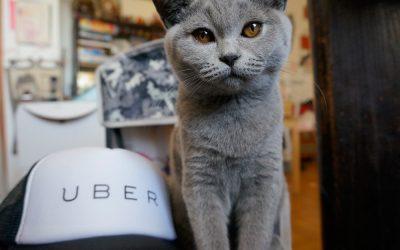 Uber – alternativa civilizată pentru a călători în București