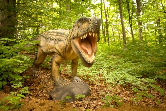 Dinozauri si aventuri la Dino Parc Rasnov