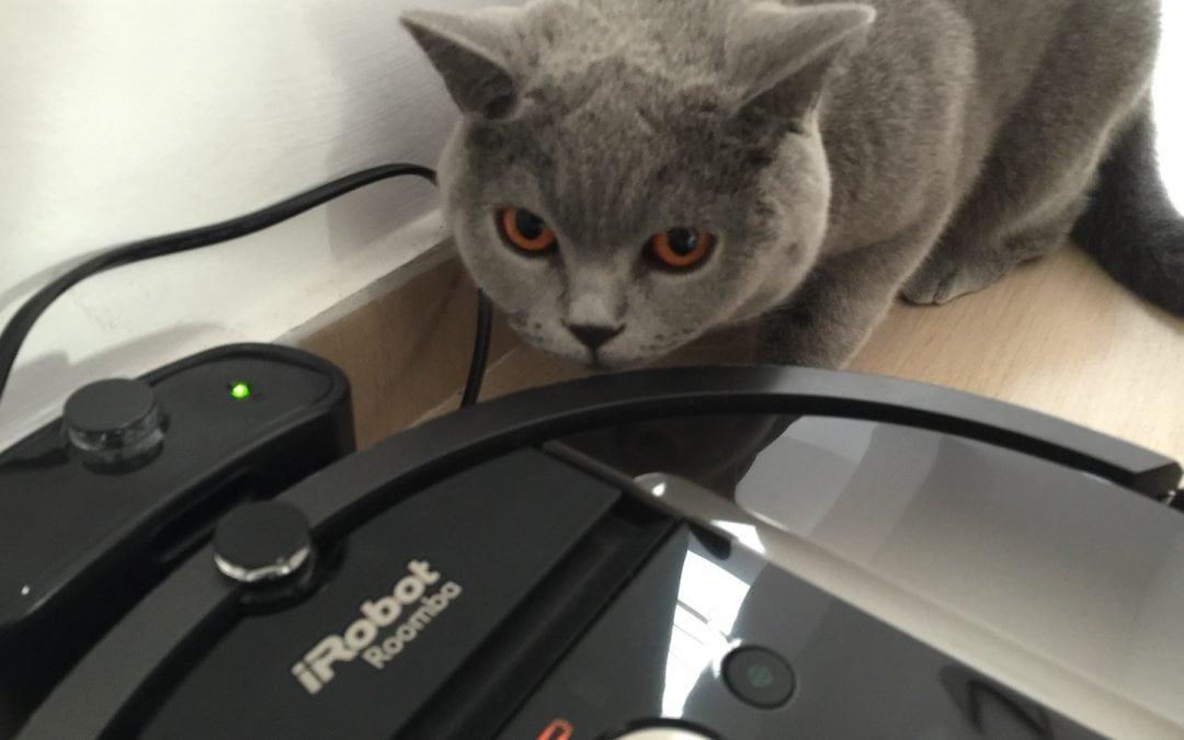 Cine n-are robot, să-și cumpere iRobot Roomba 980
