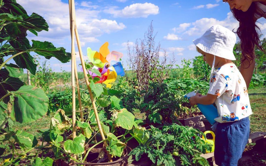 Grădinărește în stilul Montessori